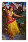 Hula Dancer, Hawaii Foto