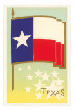 Flag of Texas Posters