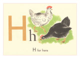 H is for Hen Posters