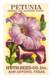 Petunia Seed Packet Prints