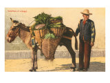 Vegetable Seller with Donkey, Italy Art