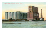 Peavey Grain Elevator, Duluth, Minnesota Posters
