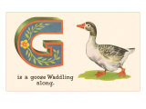 G is a Goose Print