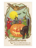 Witches, Bats Owl, Cat, Jack O'Lantern Posters