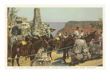 Mules at Lookout, Grand Canyon Poster