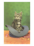 Kitten in a Hat Posters