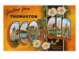 Greetings from Thomaston, Georgia Prints