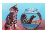 Kitten Watching Goldfish in Bowl Art