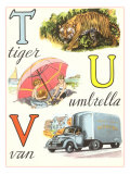 T Tiger U Umbrella V Van Posters