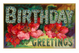 Birthday Greetings, Flowers Poster
