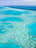 Aerial of the Great Barrier Reef, Whitsunday Coast, Queensland, Australia Photographic Print by Walter Bibikow