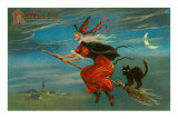 Halloween, Witch and Cat on Broom Posters