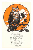 Winking Owl and Witch on Broom Prints