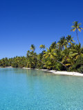 Palm Lined Beach, Cook Islands Photographic Print by Michael DeFreitas