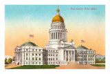 State Capitol, Boise, Idaho Poster
