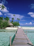 Walkway, Tahiti, French Polynesia, Oceania Photographic Print by Bill Bachmann
