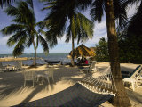Kona Kai Resort, Key Largo, Florida, USA Photographic Print by Ellen Clark