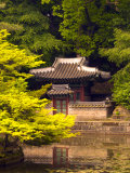 Huwon Gardens, Changdeokgung Palace, Seoul, South Korea Photographic Print by Ellen Clark