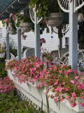 Gingerbread House Details, Oak Bluffs, Martha's Vineyard, Massachusetts, USA Photographic Print by Walter Bibikow