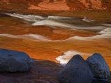 Oak Creek in Slide Rock State Park, Sedona, Arizona, USA Photographic Print by Don Paulson