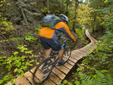Mountain biking on the Stairway to Heaven Trail, Copper Harbor, Michigan, USA Stampa fotografica di Chuck Haney