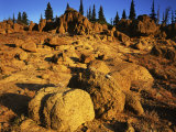 Sandstone formations on Manatash Ridge, Wenatchee National Forest, Washington, USA Photographic Print by Charles Gurche