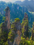 Forested Sandstone Pinnacles, Zhangjiajie National Forest Park, Hunnan, China Photographic Print by Charles Crust