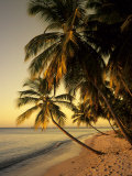 Beach at Sunset, Trinidad, Caribbean Photographic Print by Michael DeFreitas