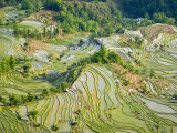 Flooded Laohu Zui Rice Terraces, Mengpin Village, Yuanyang County, Yunnan, China Photographic Print by Charles Crust