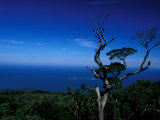 View from Pico Do Papagaio, Ilha Grande, Rio De Janeiro State, Brazil Photographic Print by Julie Bendlin