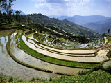 Flooded Rice Terraces, Panzhihua Village, Yuanyang County, Yunnan Province, China Photographic Print by Charles Crust