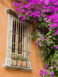 Window and Flower Pots, San Miguel De Allende, Guanajuato State, Mexico Photographic Print by Julie Eggers