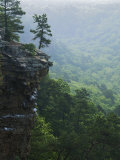Bluff at Cedar Creek, Petit Jean State Park, Arkansas, USA Photographic Print by Charles Gurche
