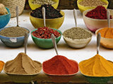 Colorful Spices at Bazaar, Luxor, Egypt Photographic Print by Adam Jones