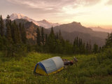 Blue backpacking tent in the Tatoosh Wilderness, Washington State, USA Photographic Print by Janis Miglavs