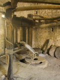 Old machinery to make olive oil at Arboretum, , Trsteno, , Dalmatia, Croatia Photographic Print by John & Lisa Merrill