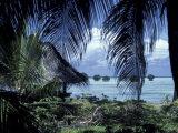 View of Shallow Coastine, Papua New Guinea Photographic Print by David Herbig