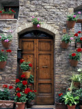 Flower Pots on Door, Assisi, Umbria, Italy Photographic Print by Marilyn Parver
