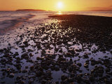 Sunrise, North Beach, Orcas Island, Washington, USA Photographic Print by Charles Gurche