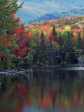 Shoreline of Heart Lake, Adirondack Park and Preserve, New York, USA Photographic Print by Charles Gurche