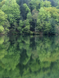 Reflections in Charlottesville Lake, Blue Ridge Mountains, Virginia, USA Photographic Print by Charles Gurche