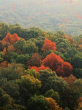 Autumn, Ozark-St. Francis National Forest, Arkansas, USA Photographic Print by Charles Gurche