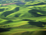 Wheat Fields, Palouse, Steptoe Butte State Park, Whitman County, Washington, USA Photographic Print by Charles Gurche