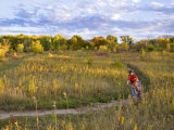 Mountain biking on the Murphy Hanrehan Trails near Minneapolis, Minnesota, USA Stampa fotografica di Chuck Haney