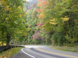 Fall Foliage on Newfound Gap Road, Great Smoky Mountains, Tennessee, USA Photographic Print by Diane Johnson