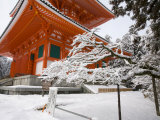Temple, Koyason Region, Japan Photographic Print by Gavriel Jecan