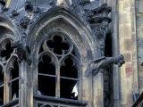 Castle Window and Gargoyle, Prague, Czech Republic Photographic Print by David Herbig