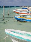 Fishing Boats Tied Up, Isla Mujeres, Quintana Roo, Mexico Photographic Print by Julie Eggers