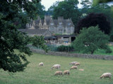 Lower Slaughter Manor and Sheep, Gloucestershire, England Photographic Print by David Herbig