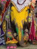 Elephant Festival, Jaipur, Rajasthan, India Fotografisk tryk af Philip Kramer
